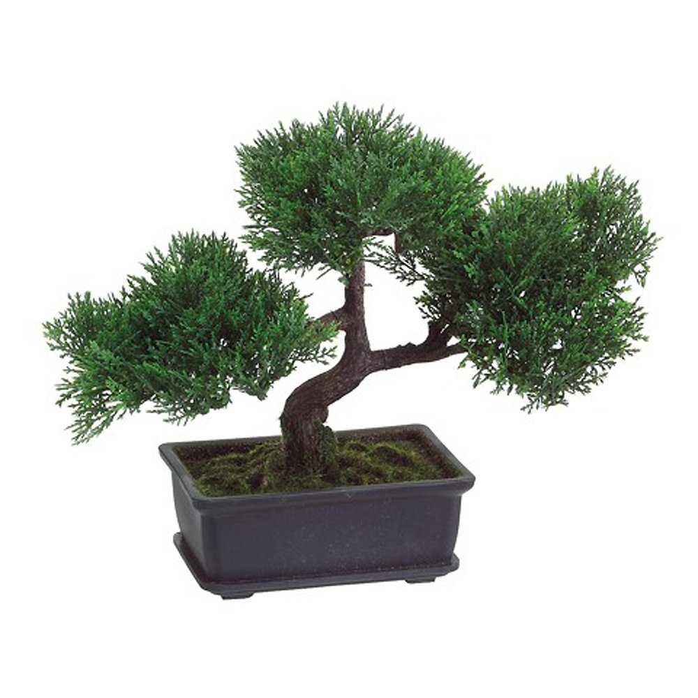 Artificial Japanese Cedar Bonsai Tree 9 inch Tall