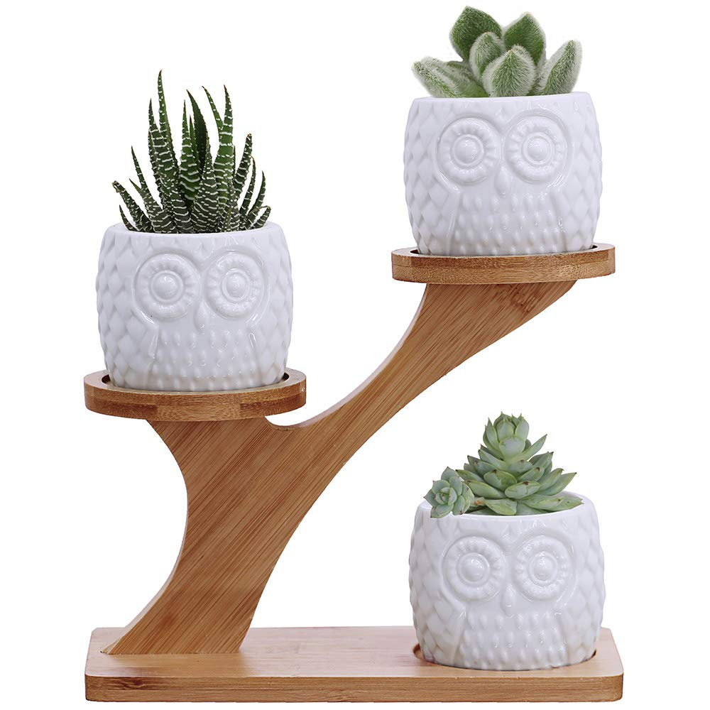 Owl Succulent Pots with 3 Tier Bamboo Saucers Stand Holder